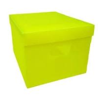 Caixa Org  Plascony Color Mini 300 X 180 X 120mm