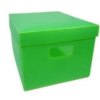 Caixa Org  Plascony Color Peq 310 X 250 X 185mm